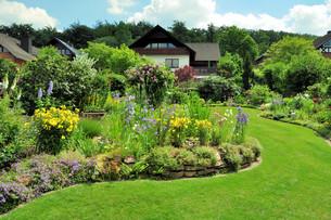 garden in summerの写真素材 [FYI00810444]