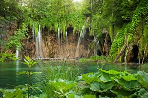 plitvice lakes national parkの写真素材 [FYI00810923]