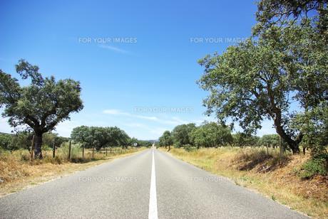 landscapesの写真素材 [FYI00811498]