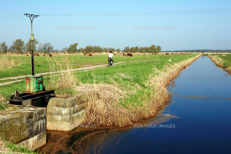 drainage ditch with damの写真素材 [FYI00812491]