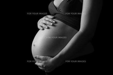 baby_pregnancyの素材 [FYI00812880]