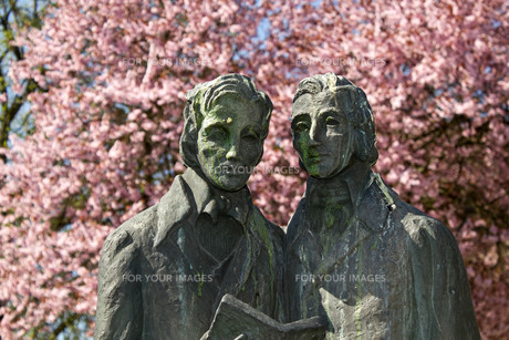 brothers grimm monument in kasselの写真素材 [FYI00812899]