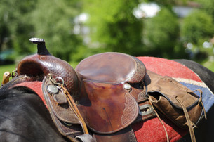 equitation_sportsの写真素材 [FYI00812989]