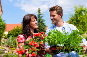gardening in summer - couple with flowers and herbsの写真素材 [FYI00813002]