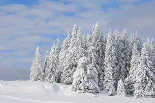 snow in the alpsの写真素材 [FYI00813334]