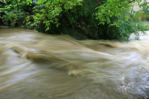 floodの写真素材 [FYI00813359]