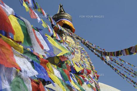 the great stupa of boudha,kathmanduの写真素材 [FYI00813396]