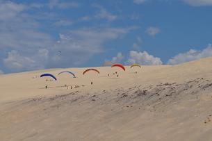 sliding screens at the dune du pylaの写真素材 [FYI00813856]