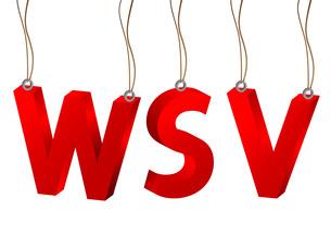 3d wsvの素材 [FYI00814600]