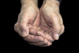 handの写真素材 [FYI00814656]