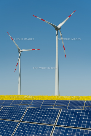 wind turbines and solar panels in a rapeseed fieldの写真素材 [FYI00815310]