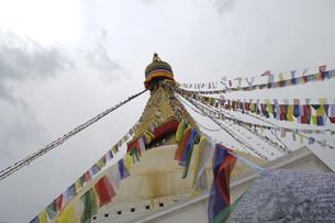 the great stupa of boudha,kathmanduの写真素材 [FYI00815466]