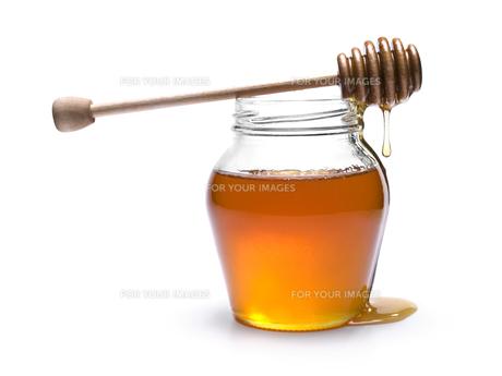 ingredients_spicesの素材 [FYI00815545]
