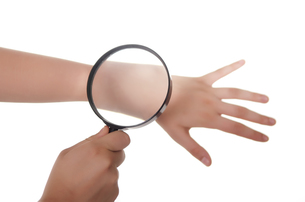 hand magnifier and skinの写真素材 [FYI00816673]