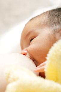 baby_pregnancyの素材 [FYI00816860]