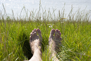 feet in the grassの写真素材 [FYI00817087]