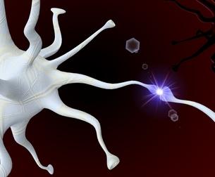 neurallyの写真素材 [FYI00818560]