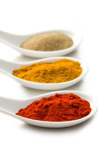ingredients_spicesの写真素材 [FYI00819688]