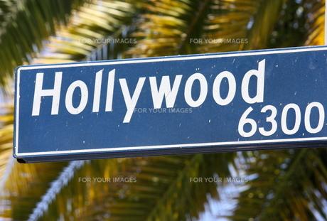 hollywood boulevardの写真素材 [FYI00819968]
