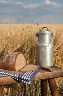picnic on the sidelines with bread and milkの写真素材 [FYI00820680]