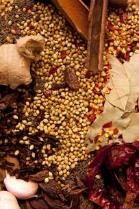 ingredients_spicesの写真素材 [FYI00820690]