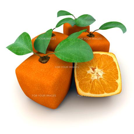 orangeの写真素材 [FYI00821672]