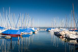 marina on lake starnbergの写真素材 [FYI00823032]