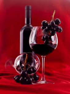alcoholの写真素材 [FYI00823568]