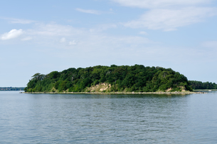 vilm in the greifswalder bodden,baltic sea,germanyの写真素材 [FYI00824417]