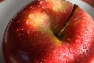 fruits_vegetablesの写真素材 [FYI00825241]