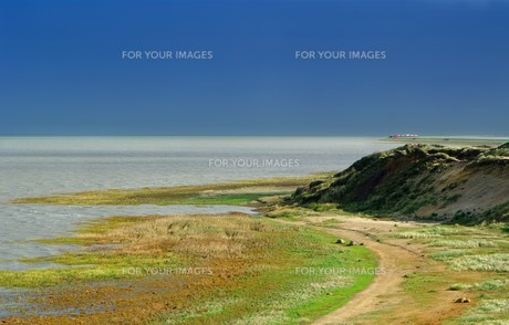 sylt morsum cliff overlooking the auto trainの写真素材 [FYI00825307]