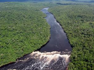 tropical amazon riverの写真素材 [FYI00825588]