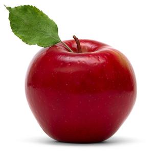fruits_vegetablesの素材 [FYI00826035]