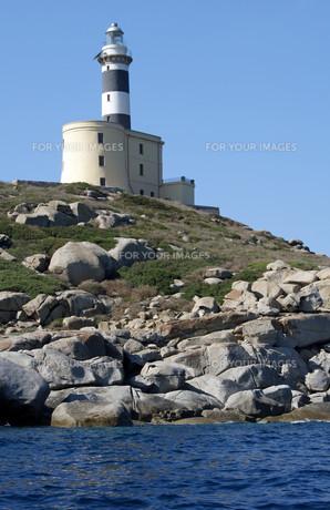 lighthouse on the cavoli - sardiniaの写真素材 [FYI00828109]