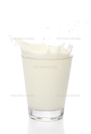 drinkの素材 [FYI00828214]