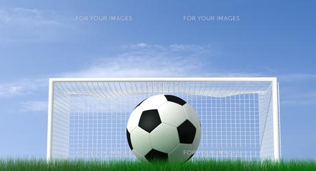 ball_sportsの素材 [FYI00828444]