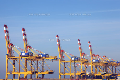 the container port of bremerhavenの写真素材 [FYI00828826]