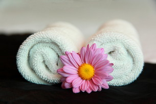 wellness_beautyの写真素材 [FYI00830458]