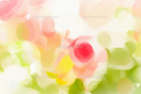 beautifulの素材 [FYI00831271]