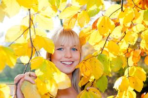 teenager looks through autumn leavesの写真素材 [FYI00831561]