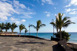 puerto del carmen,lanzarote,spainの写真素材 [FYI00832760]