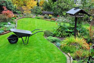 gardening with wheelbarrow in autumn gardenの写真素材 [FYI00833224]