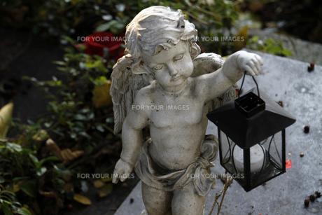 angel figure on a graveの素材 [FYI00833249]