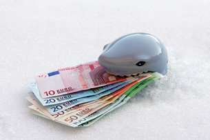 place the euro on iceの写真素材 [FYI00833487]
