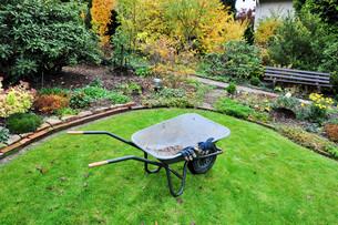 garden maintenance in autumnの写真素材 [FYI00833712]