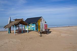 surfboard rental on the beachの写真素材 [FYI00834207]