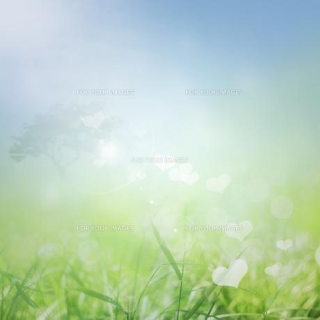 nature_environmentの素材 [FYI00834358]