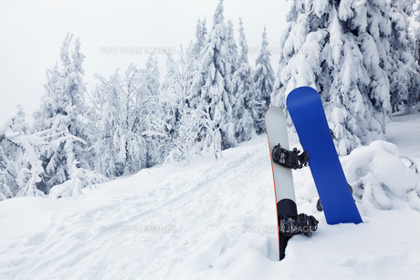 winter_sportsの素材 [FYI00834568]