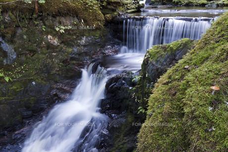 waterfall 1の素材 [FYI00835403]