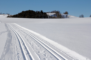 cross-country skiing in the upper allg?uの写真素材 [FYI00835498]